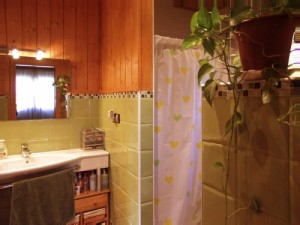 Baño casa de madera alicatado